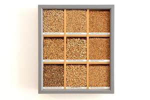 Getreidekörner